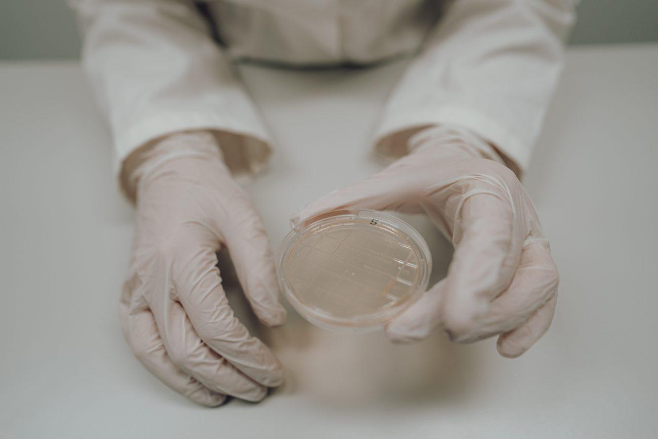 Abklatschprobe in Petrischale bei der Hygieneinspektion für Klimatechnik